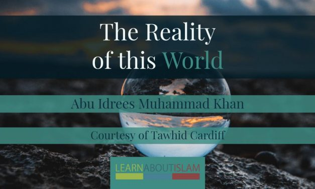 The Reality of This World | Abu Idrees